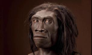 """В гибели неандертальцев виноваты эпидемии """"человеческих"""" болезней"""