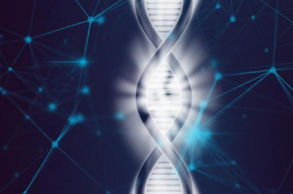 В Китае осудили биофизика, изменившего геном эмбрионов