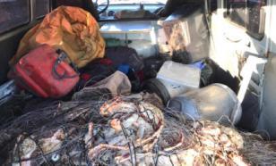 На Сахалине задержали крабовых браконьеров