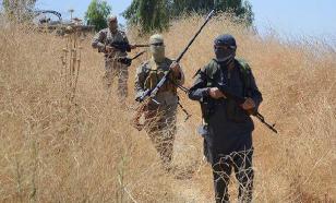 Сирийская армия в Хаме попала под удар террористов-смертников