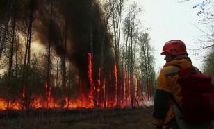 Дымом от якутских пожаров пахнет уже на Северном полюсе