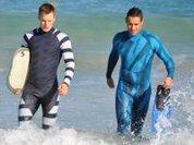Ученые смогли обмануть и напугать акул