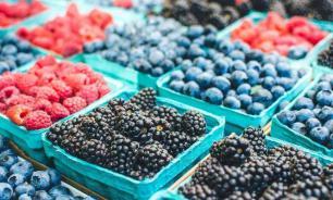 Депутат ГД предложил создать в России пункты для приема ягод