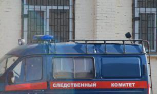 Школьница из Липецкой области заказала убийство отца и мачехи
