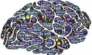 Американские нейробиологи решили загадку зарождения сознания в мозге