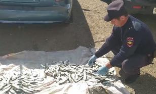 Двое жителей Краснодарского края порыбачили почти на 700 тысяч рублей
