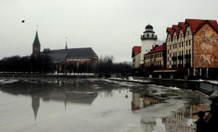 В Калининграде не будет новогодних ярмарок и гуляний. Запретили