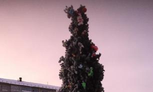Жители Коми заставили мэра убрать уродливую новогоднюю елку