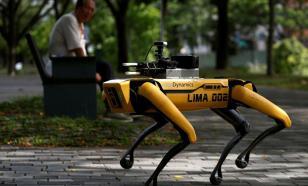 Собака-робот блюдет социальное дистанцирование в парке Сингапура