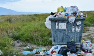 Учёные из Британии придумали способ, как быстро разлагать пластик