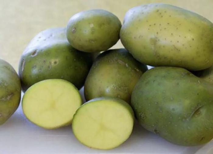 """""""Можно отравиться"""": Мясников назвал опасную ошибку в приготовлении картофеля"""