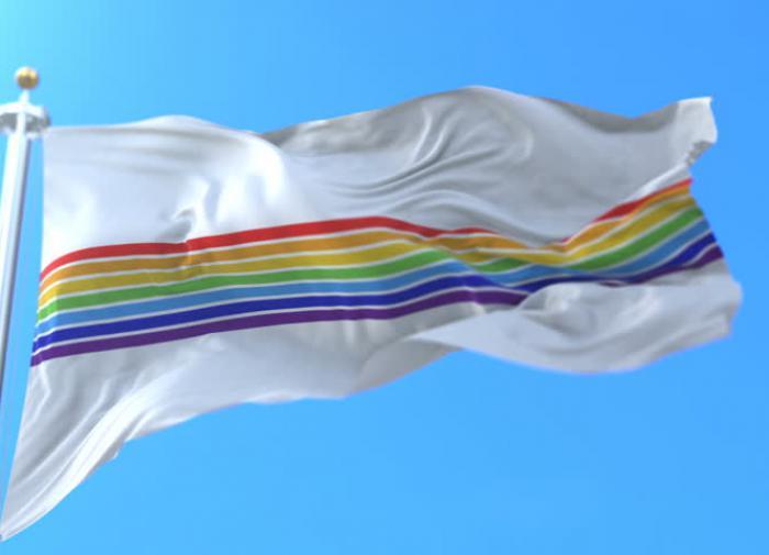 """Собчак """"обрушилась"""" на флаг ЕАО, усмотрев в нем пропаганду ЛГБТ"""