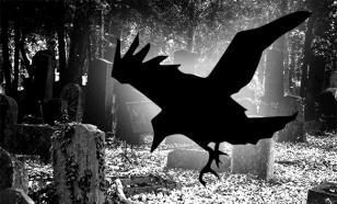 Ворона выдала приставу должницу по алиментам, скрывавшуюся на кладбище