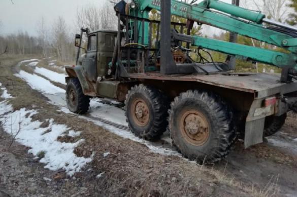 """В Курганской области поймали """"черных лесорубов"""""""