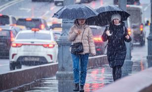 Синоптики рассказали, когда в Москве сойдёт снег