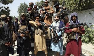 """""""Невозможно отличить от грабителей"""": талибов* призвали ввести униформу"""