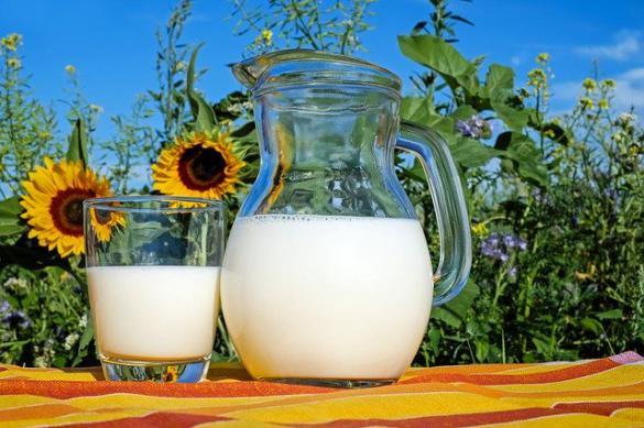 Теплое молоко и ромашковый чай улучшают сон