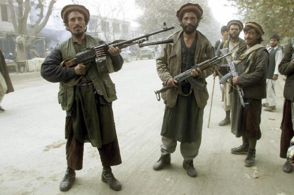 Талибы приняли предварительное решение о прекращении огня