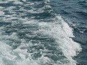 "Внутри затонувшей ""Булгарии"" обнаружено множество жертв"