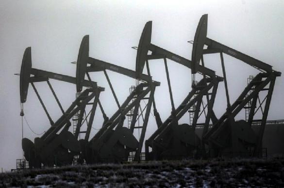 Китай увеличил закупки российской нефти