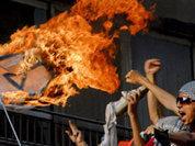 Палестинцы приветствуют свержение Каддафи