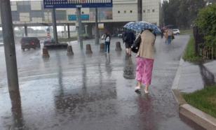 МЧС предупреждает жителей Подмосковья о ливнях в ближайшие часы