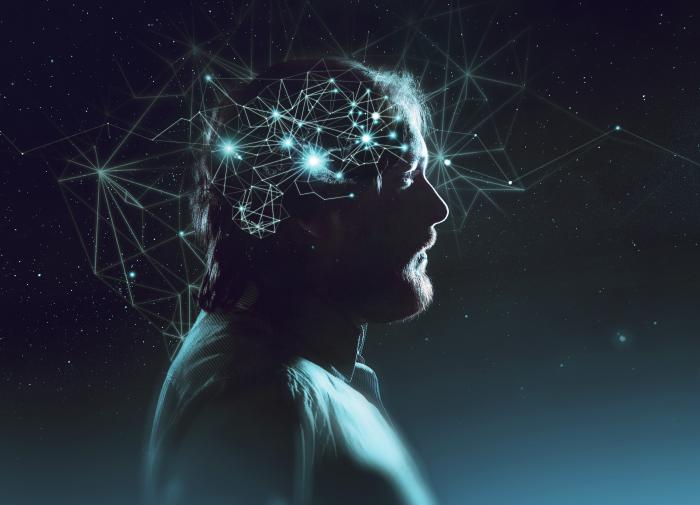 Обнаружено поразительное сходство структур мозга и Вселенной
