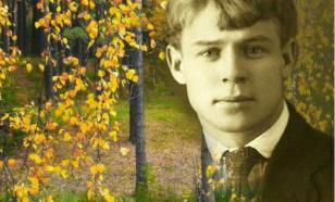Россияне назвали своих самых любимых поэтов