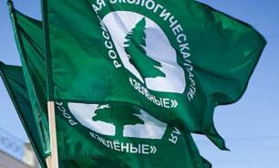 """В Кремле думают о создании """"зеленой"""" партии"""