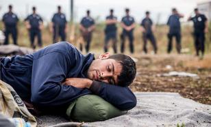 Яков Кедми: У миграционного кризиса нет решения, кроме прекращения войн
