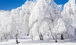 Зимы в ближайшую пятилетку будут снежными и холодными
