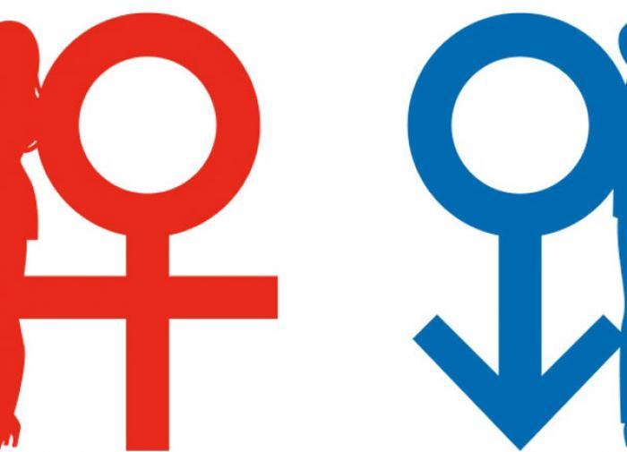 Эпигенетик Литвин: мужчина плюс женщина – это гармония Вселенной