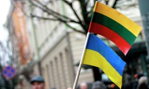 Вильнюс профинансирует обучение в Литве граждан Украины с Донбасса