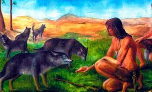 Дикие предки домашних животных. Первые три пары