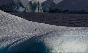 Антарктида тает, многих смоет