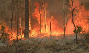 Пожарный-доброволец погиб от огня в Австралии