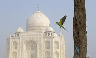 Индийское чудо света Тадж-Махал может исчезнуть навсегда