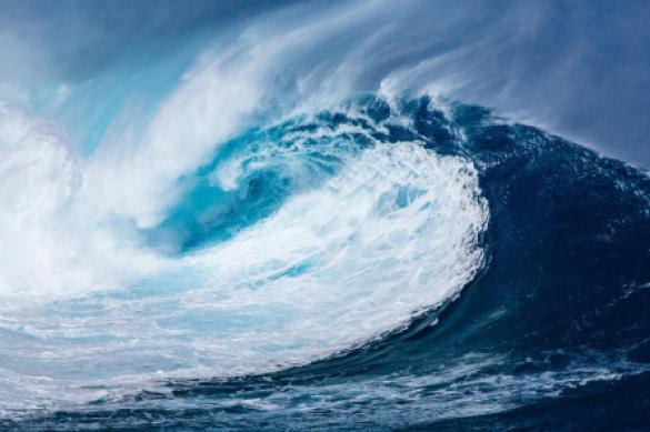 На дне Тихого океана найдены огромные подводные сооружения