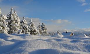 Россиянам пообещали тёплый и снежный февраль