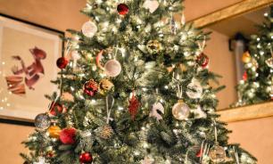 В США рождественскую елку подключили к электрическому угрю