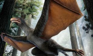 Человечество повторит судьбу динозавров?