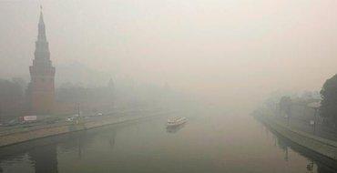 """В Москву пришел """"неопасный"""" запах гари, Подмосковье сжигает излишки древесины"""