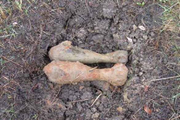 В Калининграде обезвредили два снаряда времен войны