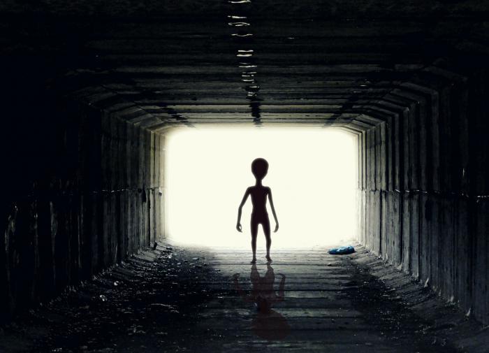 Британский биолог заявил о сходстве инопланетян и людей