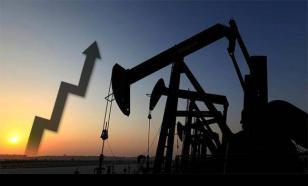 """Fitch: Прибыль российской """"нефтянки"""" ждет увеличение на 20%"""