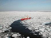 Льды Арктики угрожают почти миллиарду человек