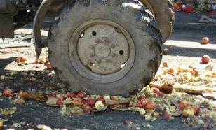 В Чите уничтожили польские яблоки