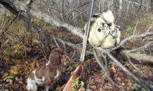 Охотник из Подмосковья перезаряжал ружье и случайно застрелил друга