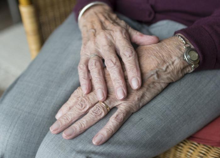 Продолжительность жизни зависит от нейронов головного мозга