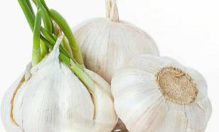 Чеснок снижает кровяное давление и холестерин